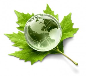 Alternative Energy, Environment, Earth.